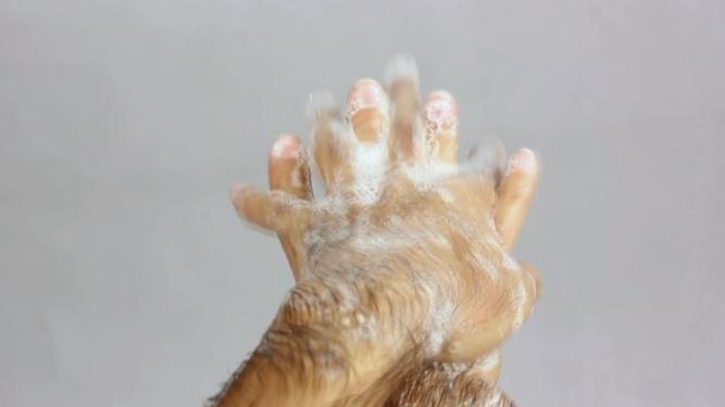 جلوگیری از انتقال بیماری های عفونی با شستن درست دست ها