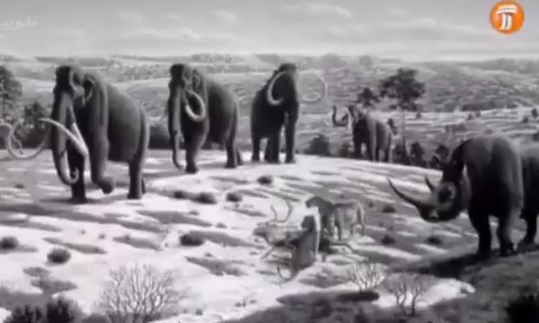 بزرگترین پستاندار زمین از گذشته تا امروز چه نام دارد؟