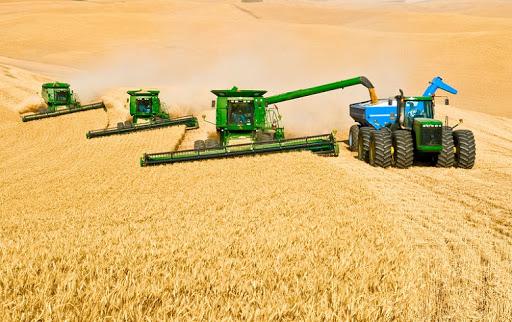 در حوزه کشاورزی از دنیا عقبیم/ بین کشاورزان و دولت، دیواری حائل است